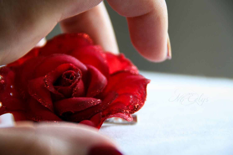 Rose rouge, Nö Eelys Photo, photographe alternative gothique romantique en région parisienne