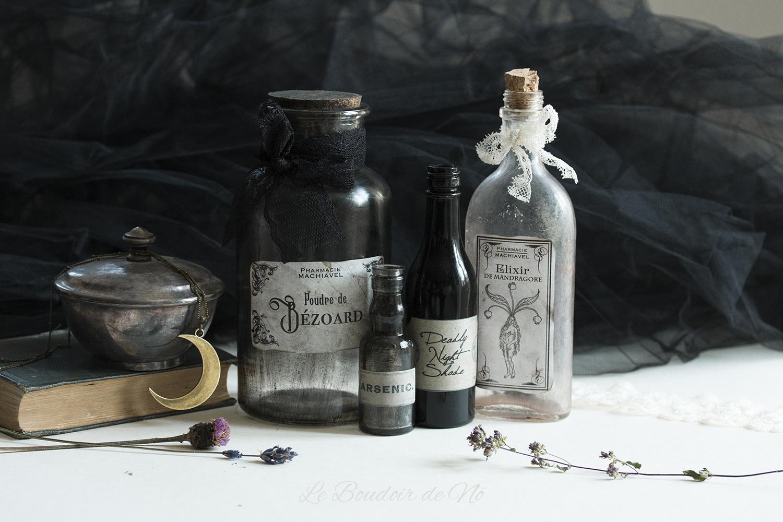 Packshot cabinet de curiosités gothique romantique Le Boudoir du Chaman