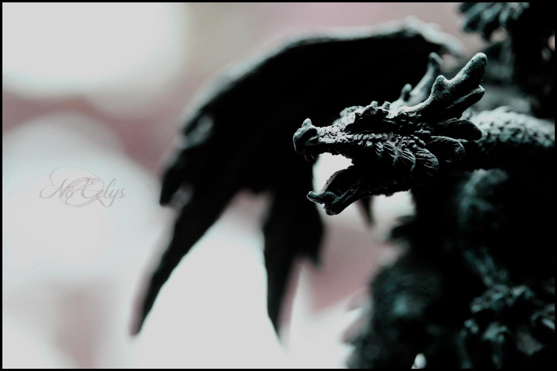 Macrophoto figurine de dragon, gothique mélancolique fantasy, par Nö Eelys Photo, photographe alternative